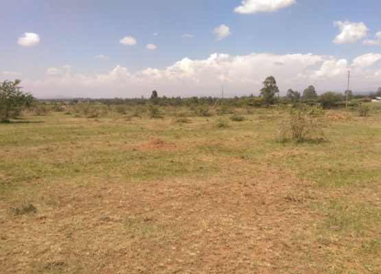 14-acre-plot-for-sale-in-Kabarak-for-quick-sale.