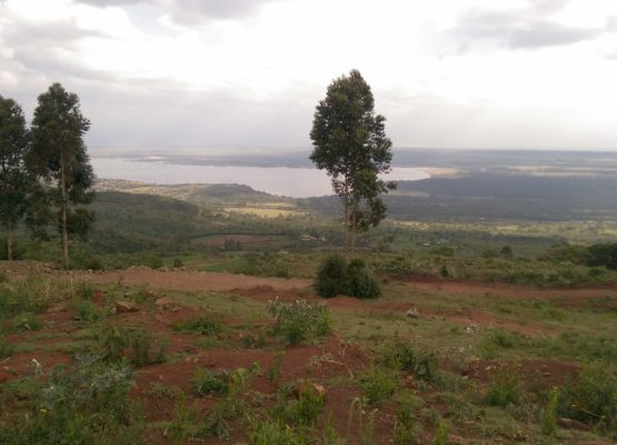 20 acres for sale at Lake Elementaita