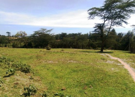 Land for sale in Rhonda, Nakuru