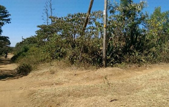 1/4 acre plots for sale 1km from tarmac in Ngata.