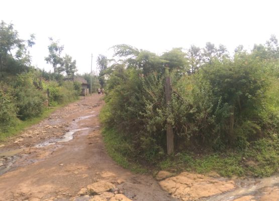 Prime plots for sale at Lanet 700mts from Tarmac.