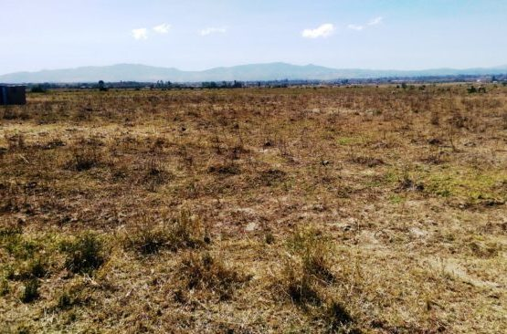 plots for sale in Elementaita Nakuru