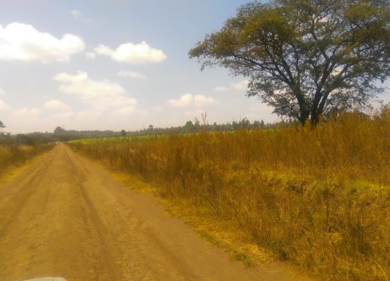 10 acres on tarmac for sale in Ngata,Nakuru.