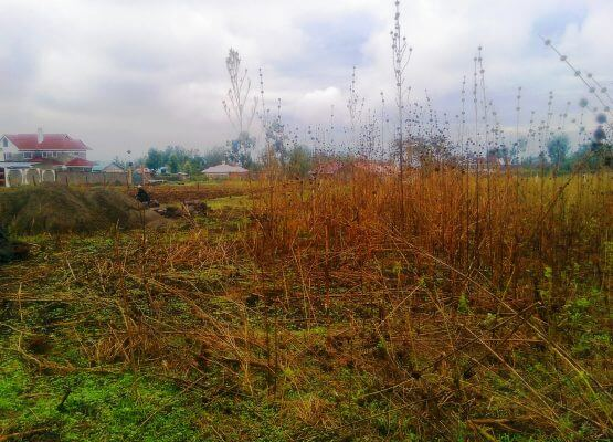 Prime plot in gated estate 200mts from tarmac-Kiamunyi