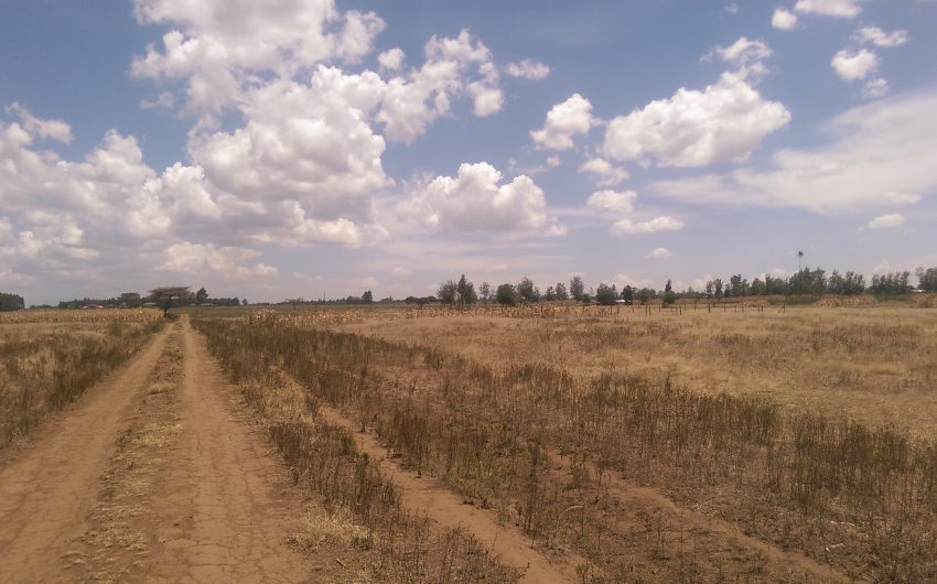 32 acres for sale at the Longonot gate,Naivasha