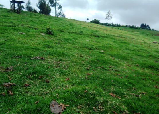 20 acres for sale in Ndundori near Sabugo Primary