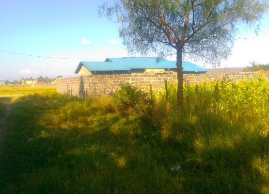 1/4 acre for sale at barnabas with perimeter wall.