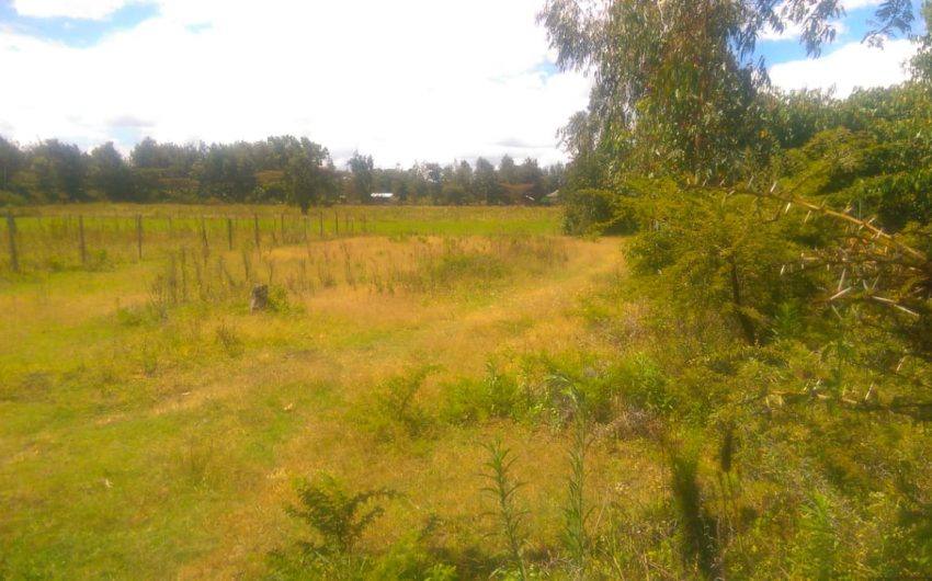 1/4 acre plots for sale 1km from tarmac in Ngata