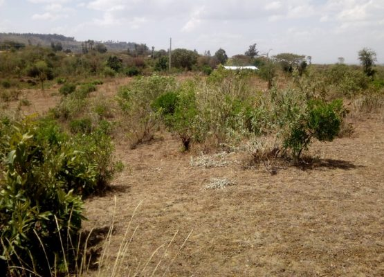 25 acres for sale in Rongai,Nakuru