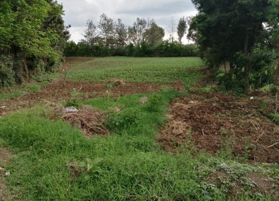 3/4 acre plot for sale at Olive Inn, Kiamunyi