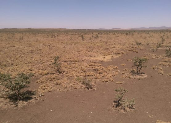 43 acres for sale in Rumuruti, Laikipia county