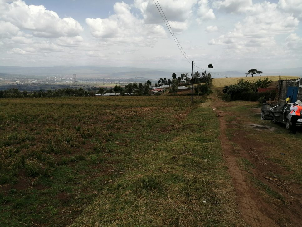 50*100 Plots for Sale in Ngata 2kms From Tarmac